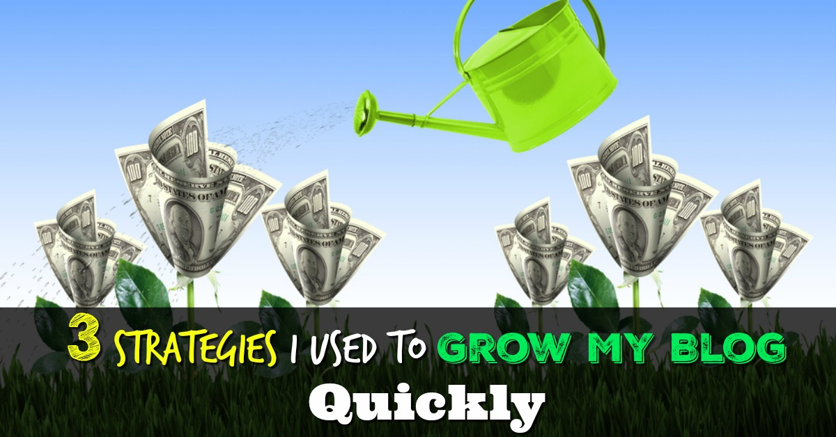 3 Strategies I Used To Grow My Blog Quickly