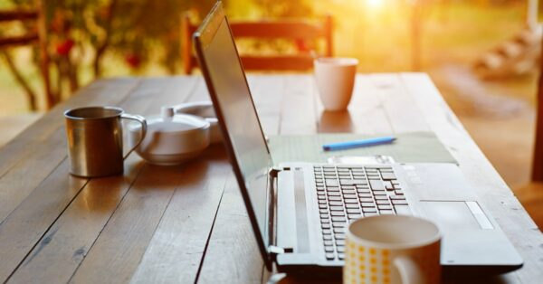 Millennial Money Man Online Income Report